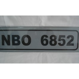 Plastic Plate Tinted (Old Type)